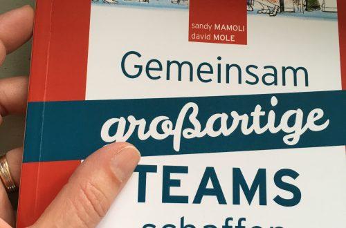 "Hand hält Buch ""Gemeinsam großartige Teams schaffen"""